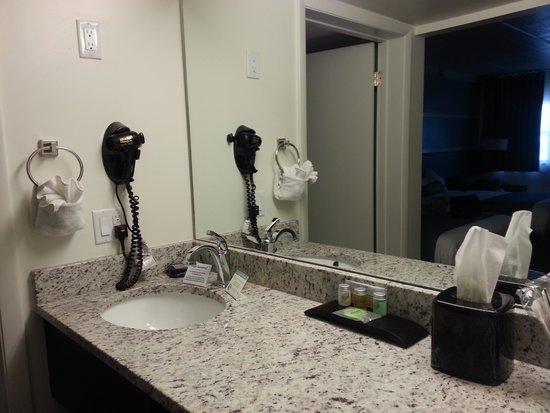 Jaybird's Inn: Nicely appointed bathroom