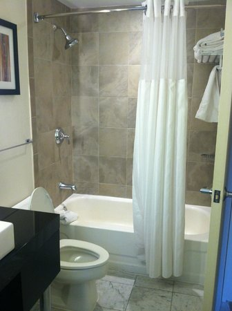 The Warwick Hotel Rittenhouse Square : 2nd part of the bathroom.