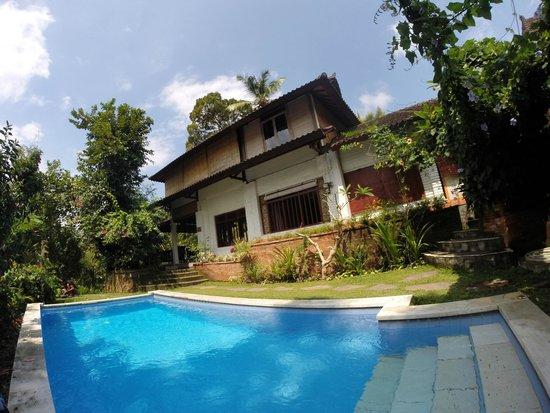 Pugig Homestay: Pool / Innenhof
