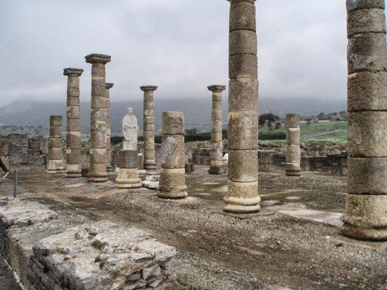 Conjunto Arqueológico Baelo Claudia: ruinas Baelo Claudia