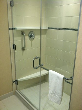 Courtyard Philadelphia South at The Navy Yard: Shower, loved it!