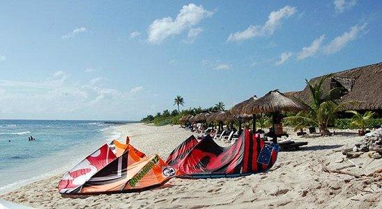 bluevenado beachclub and restaurant: Blue Venado...Comiendo y haciendo kitesurf en el Paraiso