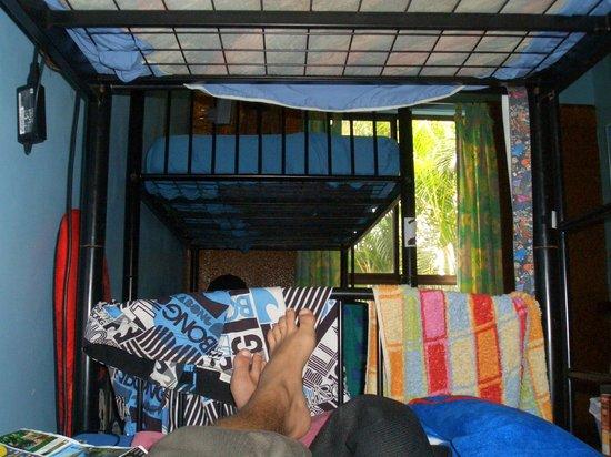 Byron Beach Resort: 4 dorm room