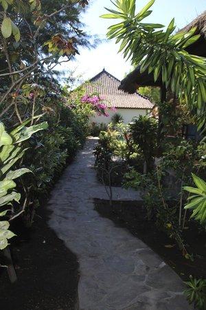 Manta Dive Gili Air Resort : Path to the Bungalows