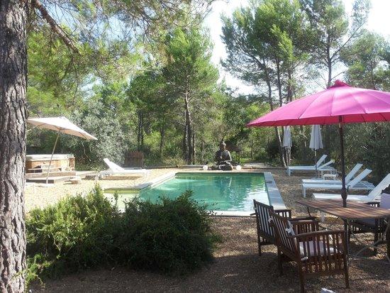 Villa Josephine : La piscina con il Buddha, immersa nel verde