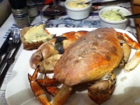 Le Crabe Marteau : Crab