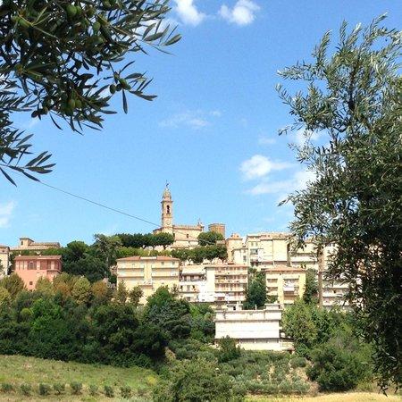 The Hidden Farmhouse: Mogliano