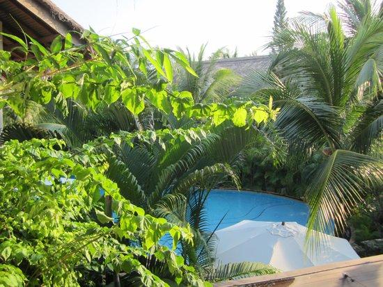 Bamboo Village Beach Resort & Spa: вид из номера