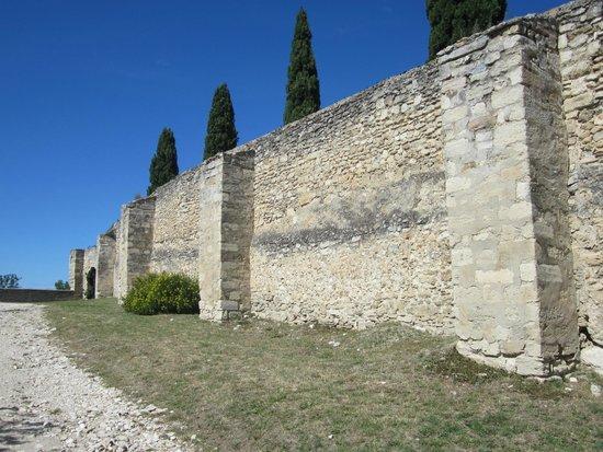 Chartreuse du Val de Bénédiction : de stadswallen van Fort St. André