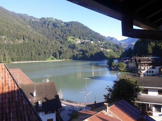 Alle Alpi Hotel: vista camera