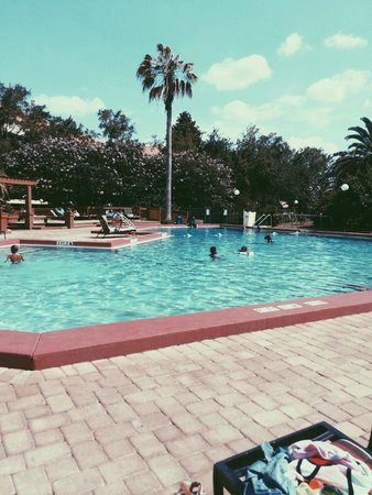 Allure Resort International Drive Orlando: Outdoor pool