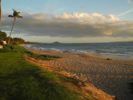 playa picture of days inn maui oceanfront kihei. Black Bedroom Furniture Sets. Home Design Ideas