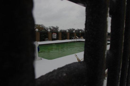 La Quinta Inn & Suites Alvarado: cold pool