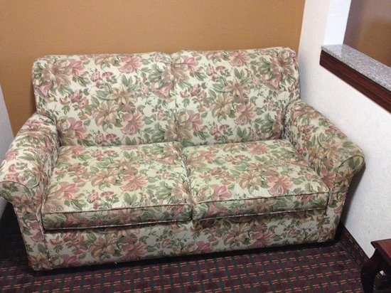 Sofa Gross sofa bed and gross picture of baymont inn suites oklahoma