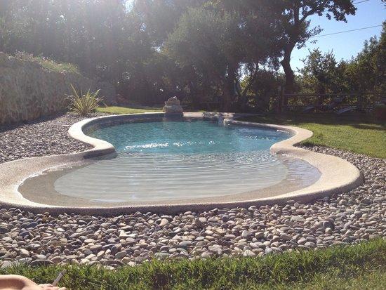 L'Oustalet des Marres : piscine