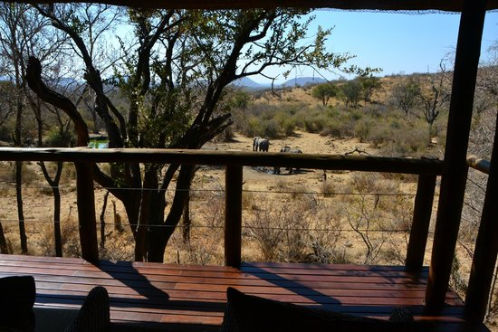 Impodimo Game Lodge : Room with a view