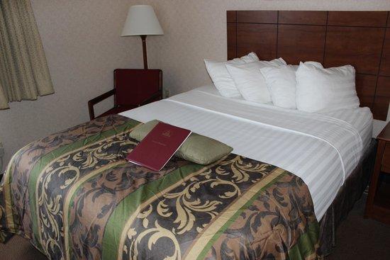 Ramada Fargo : Bed.
