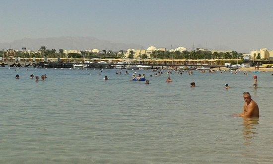 SUNRISE Select Royal Makadi Aqua Resort -Select- : moře