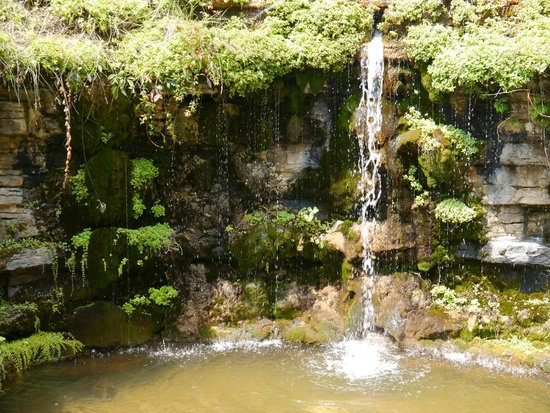 Beau Boerner Botanical Gardens: Rockery And Waterfall
