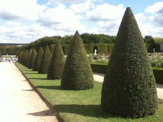 Château de Versailles : Jardin