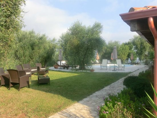 Parco dei Limoni: la piscina e gli ulivi