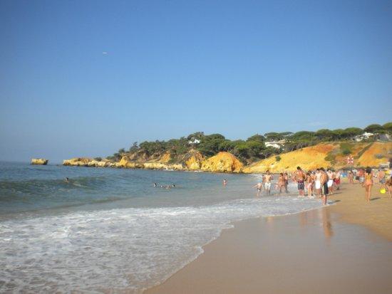 Real Bellavista Hotel & Spa : spiaggia di santa eulalia