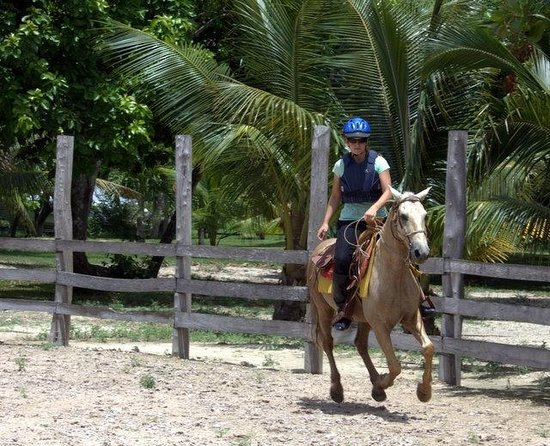 Num Ka'an Ranch: horse definitely got a workout