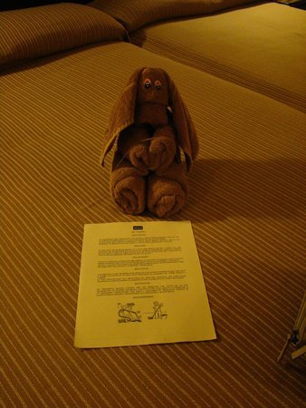 ClubHotel Riu Tequila: every day they left a new towell friend
