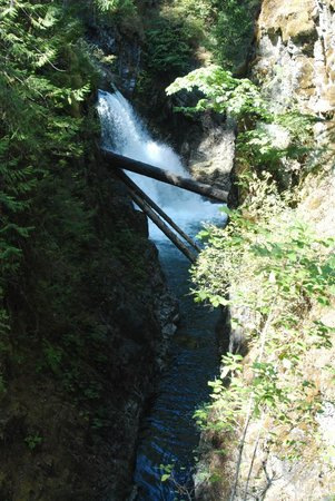 Little Qualicum Falls Provincial Park: One of many falls