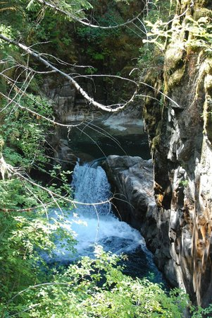 Little Qualicum Falls Provincial Park: One of the falls