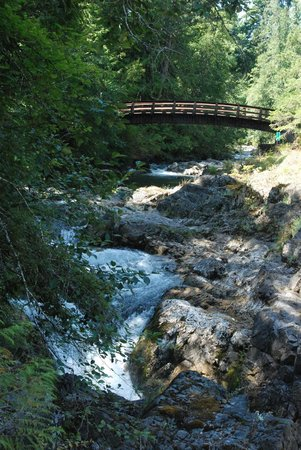 Little Qualicum Falls Provincial Park: Bridge from trail