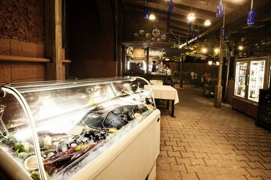 ALIOLI : Enjoy fresh fish, king crabs, lobster, percebes, coquilles St-Jacques, and more!