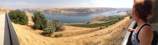 Maryhill Museum of Art: Panorama view of Columbia River Gorge from the cafe in Maryhill Museum