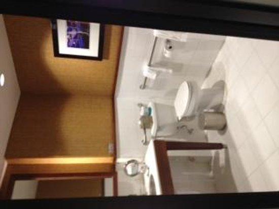 Hotel Valencia - Santana Row: washroom