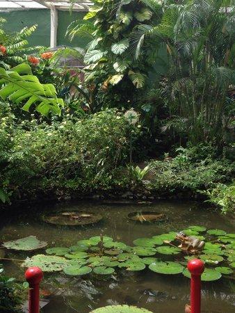 Entopia: Garden