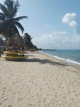Almond Beach Resort & Spa: Beach and Kayaks