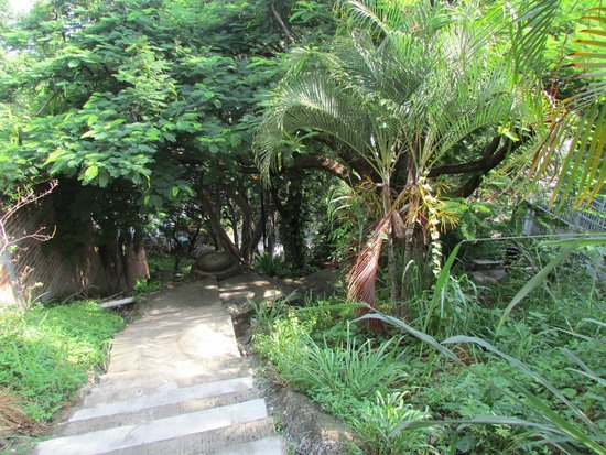 Casa de los Arcos : Downhill Path (Staircase) 3