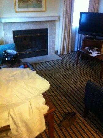 Hawthorn Suites by Wyndham Dearborn/Detroit MI: Living room