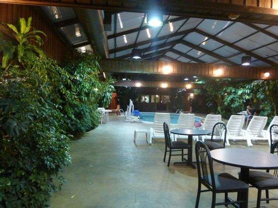 Wingfield Inn & Suites: Atrium Pool