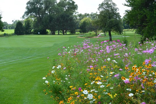 Downers Grove Golf Club