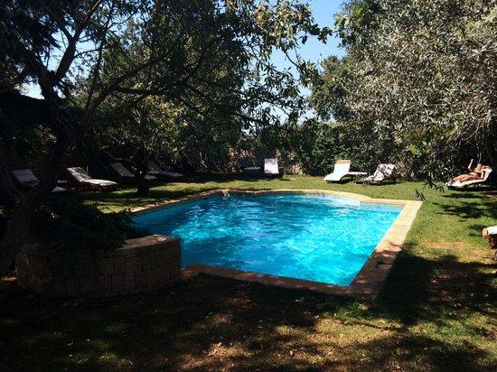 Eremo della Giubiliana : pool