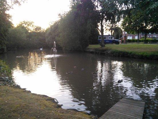 Copthorne Hotel London Gatwick: white swan lake.