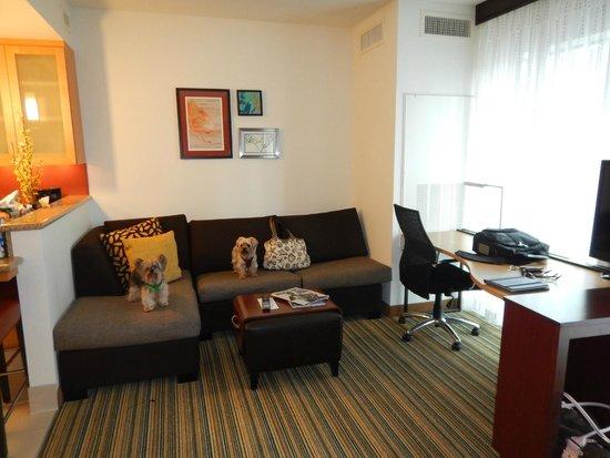 Residence Inn Little Rock Downtown: Studio King Livingroom