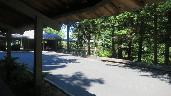 Salishan Spa and Golf Resort: One of Many Covered Walkways