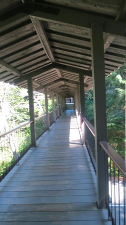 Salishan Spa and Golf Resort: Love Those Covered Walkways!