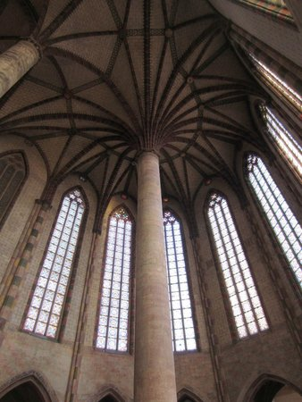 Église des Jacobins : Palmier des Jacobins