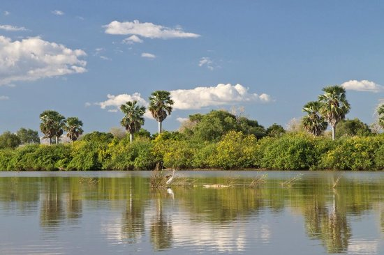 Selous Impala Camp: Rufiji River