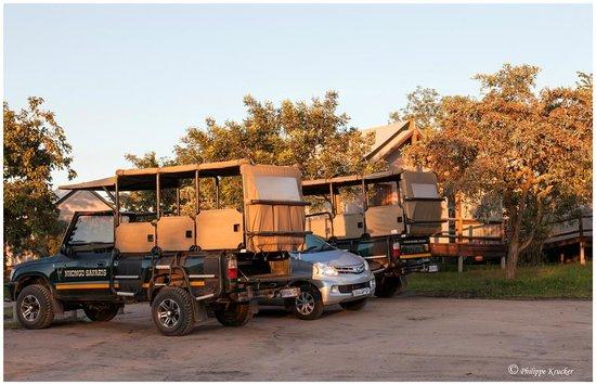 Nkambeni Safari Camp: PRÊT POUR LE SAFARI ?