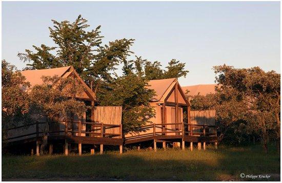Nkambeni Safari Camp: SAFARI LODGE