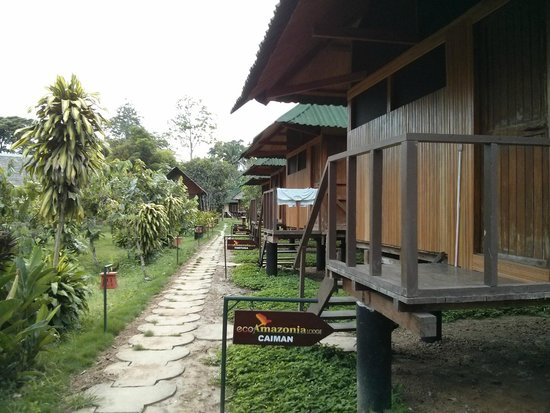 Ecoamaziona Lodge : Lodges